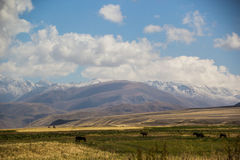 Schönes Kirgizstan Lizenzfreie Stockbilder