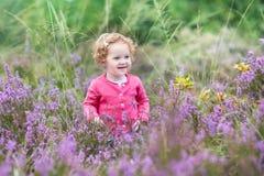 Schönes kleines Baby in den purpurroten Herbstblumen Lizenzfreie Stockfotos