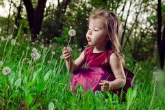 Schönes kleines Mädchen auf einem Rasen mit Löwenzahn Stockfoto
