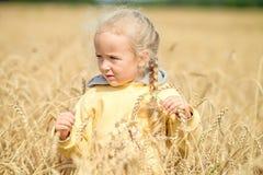 Schönes kleines Mädchen, das auf dem Gebiet des Weizens geht Lizenzfreies Stockbild