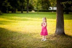 Schönes kleines Mädchen in einem Park stockbilder