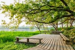 schönes Landschaftsbild des Sommers Stockbild