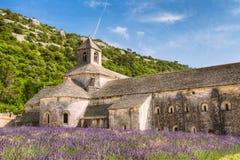 Schönes Landschaftslavendel-Feld und eine alte Kloster-Abtei Stockfoto