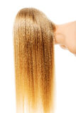 Schönes langes blondes Haar, lokalisiert auf Weiß Stockfotos