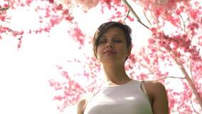 Schönes Mädchen auf dem Kirschblüte-Hintergrund stock video footage