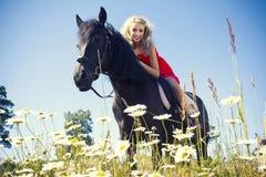Schönheit auf Pferd Stockfoto