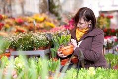 Schönes Mädchen, das Blumen auswählt Stockfoto