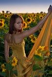 Schönes Mädchen in den Sonnenblumen Stockbilder