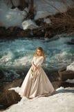 Schönes Mädchen in einem Kleid stockfotos