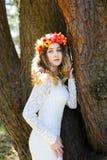 Schönes Mädchen in einem Wald Stockbilder
