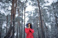 Schönes Mädchen in einer rosa Jacke, die in einem Wald unter hohem steht Stockbild