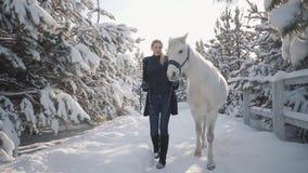 Schönes Mädchen geht mit Pferd in der Schneewinterranch Junge Frau, die ihr Pferd mit seinem Hauptkragen sprechend mit führt stock footage