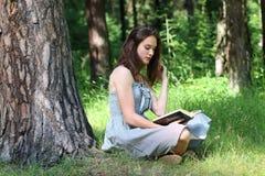 Schönes Mädchen im Kleid, das unter Baum auf Gras sitzt Stockfotografie