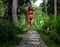 Schönes Mädchen im roten Badeanzug, der im tropischen Standort mit grünen Bäumen aufwirft Junger Sport modelliert im Bikini mit p lizenzfreies stockfoto