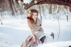 Schönes Mädchen im Winterwald Stockfoto