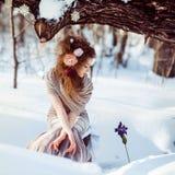 Schönes Mädchen im Winterwald Stockfotos