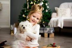 Schönes Mädchen mit dem Hund, der nahe dem Weihnachtsbaum sitzt Frohe Weihnachten und frohe Feiertage stockfotos