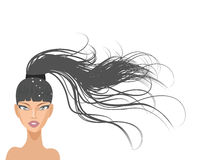 Schönes Mädchen mit dem langen Haar lizenzfreie abbildung