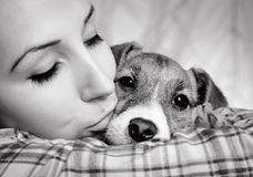 Schönes Mädchen mit Dreadlocks und Hundewelpe Jack Russell-terrie Stockfoto