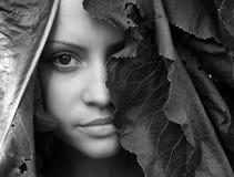Schönes Mädchen mit großen Blättern auf Kopf lizenzfreie stockfotos