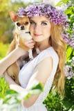 Schönes Mädchen mit lila Blumen hält chuhuahua Hund Stockfotos