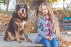 Schönes Mädchen mit tibetanischem Mastiff auf der Natur Lizenzfreie Stockfotografie