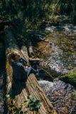 Schönes Mädchen sitzt auf Klotz und dem Kühlen nach Reise Frauenreisender im Sommer gibt Holzbrücke im Hintergrund von weiter stockfotografie