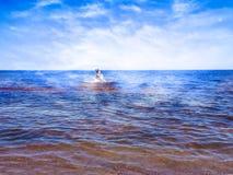Schönes Mädchen zwischen glänzendem Wasser von blauem Meer lizenzfreie stockfotos