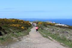 Schönes Meer, Howth, Dublin Bay, Irland, Felsen, Klippe und Steine Lizenzfreie Stockfotografie