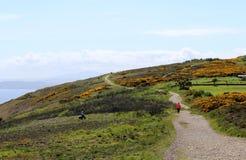 Schönes Meer, Howth, Dublin Bay, Irland, Felsen, Klippe und Steine Lizenzfreies Stockfoto