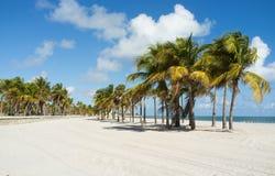 Schönes Miami Beach lizenzfreie stockfotos