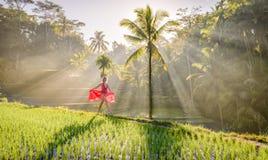 Schönes Modell im roten Kleid an Tegalalang-Reis-Terrasse 8 Lizenzfreie Stockfotos