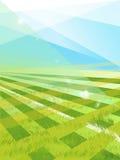 Schönes Muster des frischen grünen Grases für Fußballsport Stockfotos