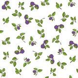Schönes nahtloses Muster mit natürlichen frischen Blaubeeren Lizenzfreie Stockfotografie