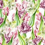 Schönes nahtloses Muster von rosa und purpurroten Tulpen Lizenzfreies Stockfoto