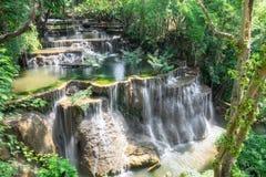 Schönes natürliches des tropischen Regenwaldes des Wasserfalls Lizenzfreie Stockfotos