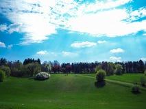 Schönes Naturfeld Stockbilder