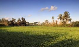 Schönes Naturland - Ägypten Lizenzfreie Stockbilder