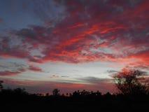 Schönes nettes des Sonnenuntergangzeit-Sommers Stockbild