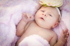 Schönes neugeborenes Baby, das in weiche Decke legt Stockbild