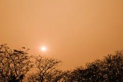Schönes orange Licht des Sonnenaufgangs Stockbild