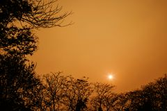 Schönes orange Licht des Sonnenaufgangs Stockfotos