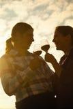 Schönes Paar-Rösten Stockfoto