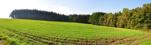 Schönes Panorama Lizenzfreies Stockfoto