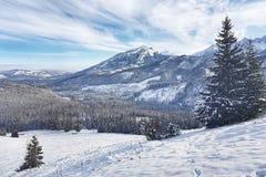 Schönes Panorama des schneebedeckten Tales mit Bergen in lizenzfreie stockfotografie
