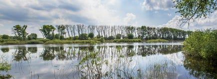 Schönes Panoramafoto des Flusses und des Waldes stockbild
