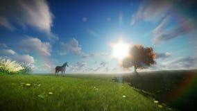 Schönes Pferd und Baum des Lebens gegen timelapse Wolken stock abbildung