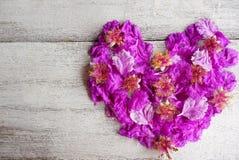 Schönes Purpur blüht Herzform für Valentinstag und Hochzeit Stockfoto