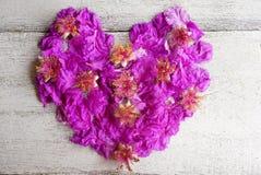 Schönes Purpur blüht Herzform für Valentinstag und Hochzeit Stockfotos