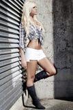 Schönes reizvolles junges blondes Mädchen lizenzfreie stockfotografie